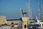 Rhodos stad Rhodos - Rhodos Dodecanese - Foto 1506 - Foto van De Griekse Gids
