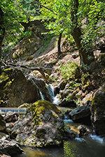 Vlindervallei Rhodos - Rhodos Dodecanese - Foto 1852 - Foto van De Griekse Gids