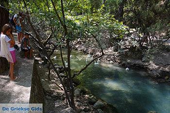 Epta Piges - Zeven bronnen Rhodos - Rhodos Dodecanese - Foto 184 - Foto van De Griekse Gids