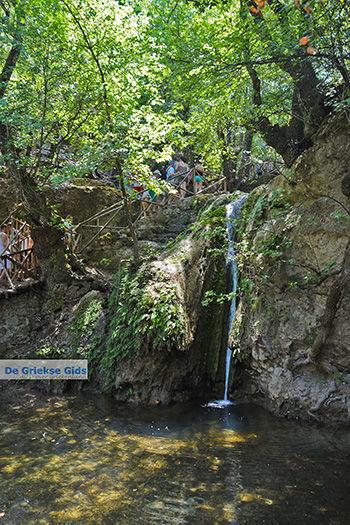 Vlindervallei Rhodos - Rhodos Dodecanese - Foto 1879 - Foto van https://www.grieksegids.nl/fotos/rhodos/350/vlindervallei-056.jpg