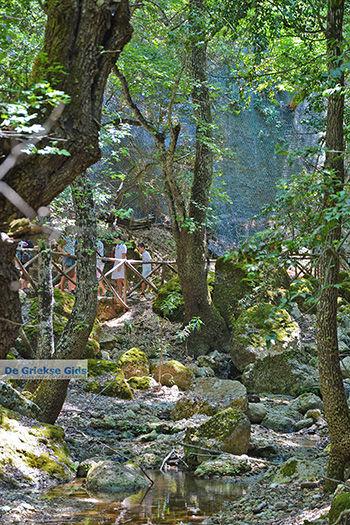 Vlindervallei Rhodos - Rhodos Dodecanese - Foto 1895 - Foto van https://www.grieksegids.nl/fotos/rhodos/350/vlindervallei-072.jpg
