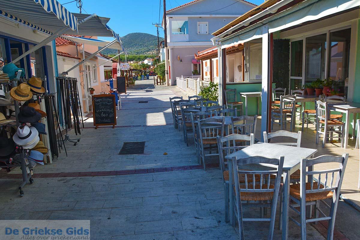 foto Ireon Samos | Griekenland | De Griekse Gids foto 17
