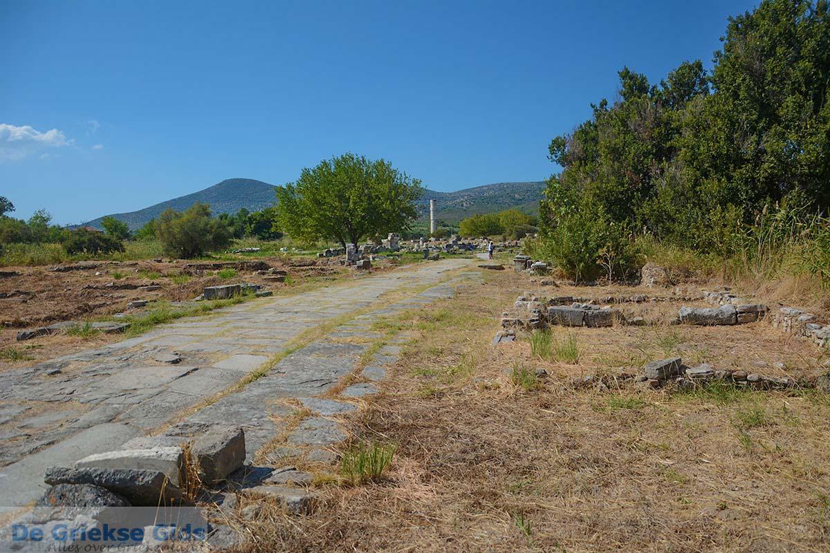 foto Ireon Samos | Griekenland | De Griekse Gids foto 81
