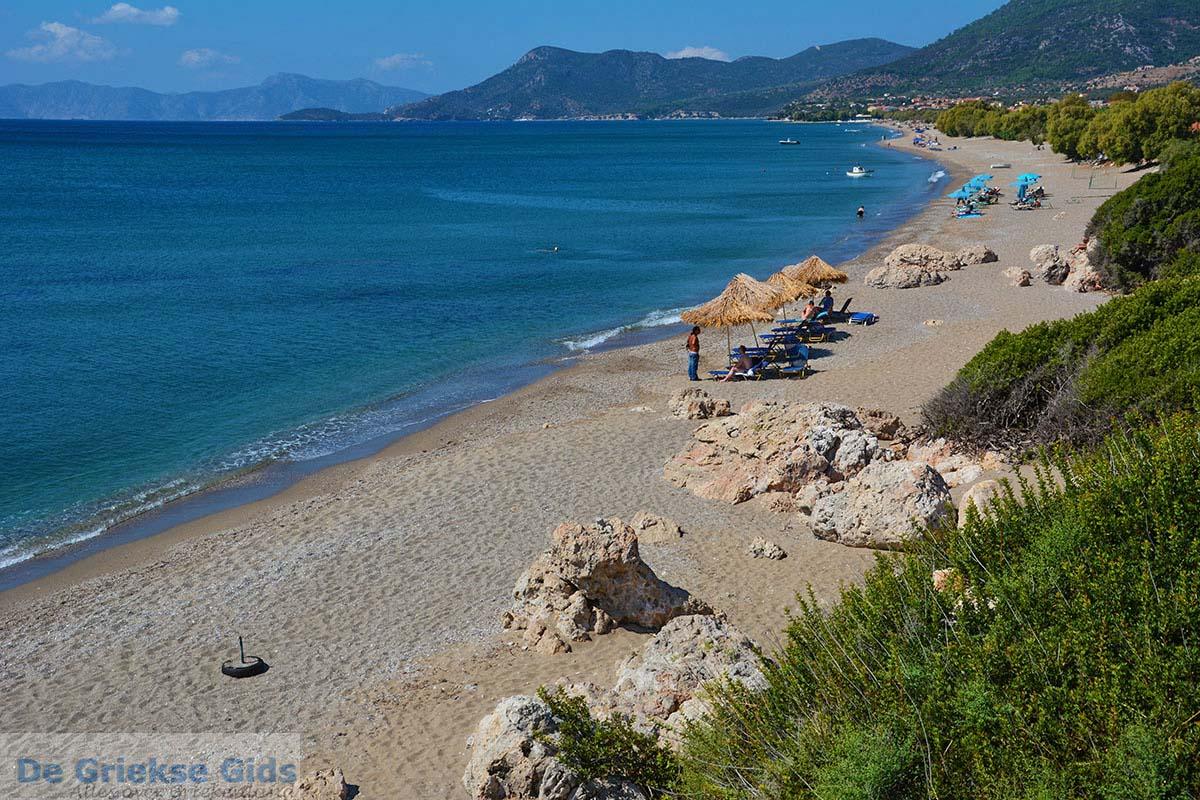 foto De standen Kampos Samos en Votsalakia Samos   Griekenland foto 7
