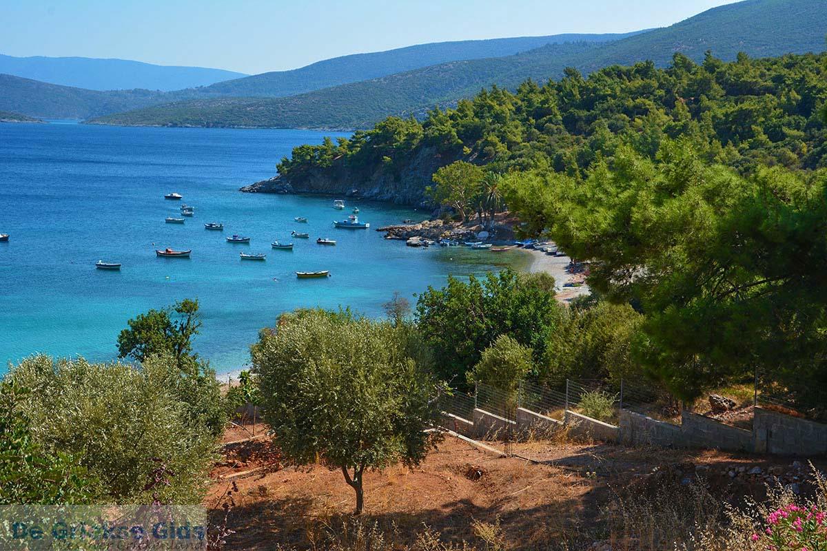 foto Mourtia Samos   Griekenland   Foto 3