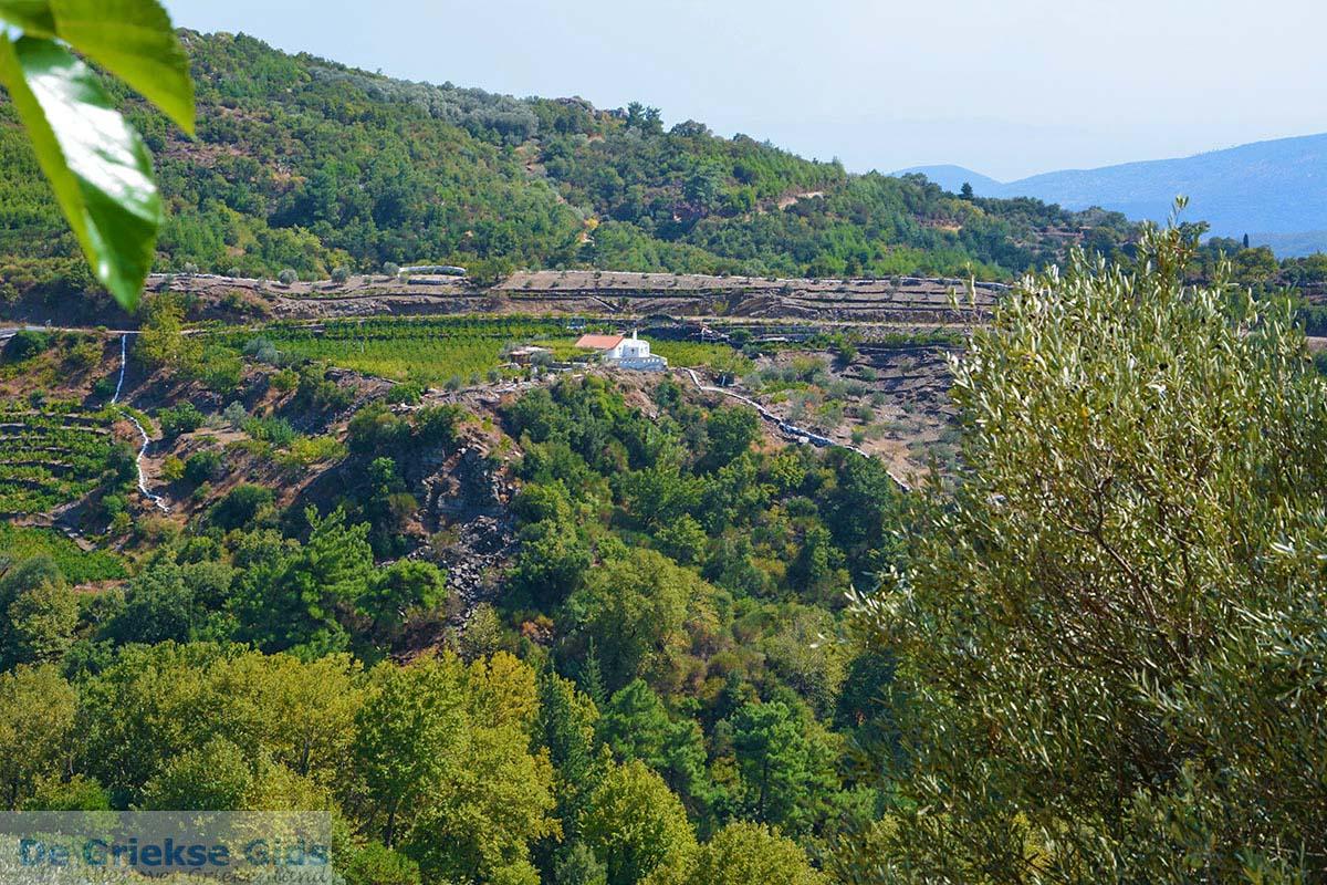 foto Pandrosso Samos | Griekenland | Foto 2