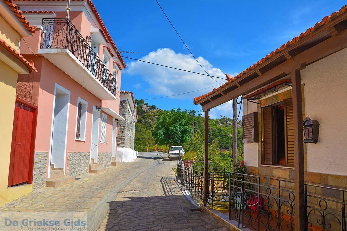 foto Pandrosso Samos | Griekenland | Foto 9