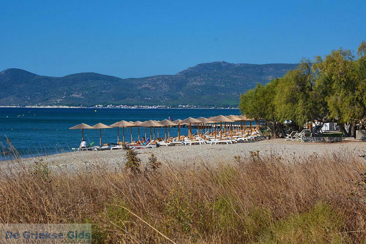 foto Strand bij Pythagorion Samos - Potokaki Samos foto 3