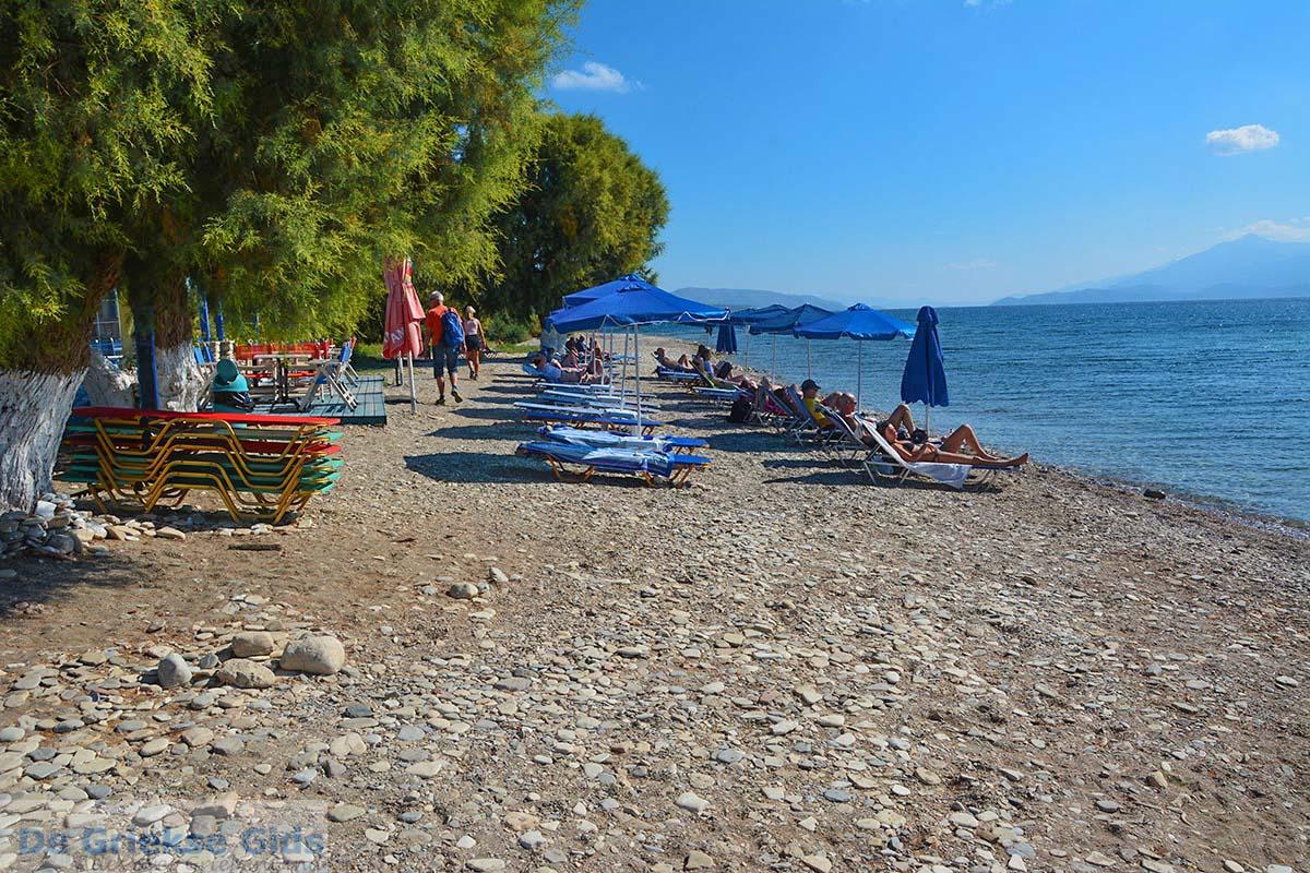 foto Potokaki Samos   Griekenland   Foto 25