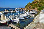 GriechenlandWeb.de Agia Paraskevi Samos | Griechenland | Foto 6 - Foto GriechenlandWeb.de
