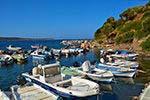 GriechenlandWeb.de Agia Paraskevi Samos | Griechenland | Foto 9 - Foto GriechenlandWeb.de