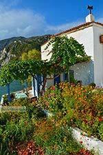 Avlakia Samos | Griekenland | De Griekse Gids foto 20 - Foto van De Griekse Gids