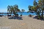 GriechenlandWeb.de De standen Kampos Samos und Votsalakia Samos | Griechenland foto 18 - Foto GriechenlandWeb.de