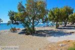 De standen Kampos Samos en Votsalakia Samos | Griekenland foto 19 - Foto van De Griekse Gids