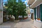 GriechenlandWeb.de Mavratzei Samos | Griechenland | Foto 14 - Foto GriechenlandWeb.de