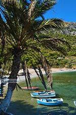 Mourtia Samos   Griekenland   Foto 11 - Foto van De Griekse Gids