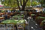 Mytilinioi Samos | Griekenland | Foto 3 - Foto van De Griekse Gids