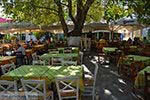 Mytilinioi Samos | Griekenland | Foto 3