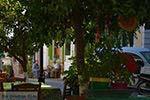 Mytilinioi Samos | Griekenland | Foto 6 - Foto van De Griekse Gids