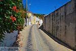 GriechenlandWeb.de Pandrosso Samos | Griechenland | Foto 8 - Foto GriechenlandWeb.de
