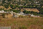 GriechenlandWeb.de Opgravingen Pythagorion Samos - Potokaki Samos foto 3 - Foto GriechenlandWeb.de