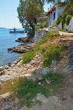 Psili Ammos Mykali Samos   Griekenland   Foto 10 - Foto van De Griekse Gids