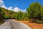 Pyrgos Samos | Griekenland | Foto 9 - Foto van De Griekse Gids