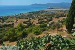 Pythagorion Samos | Griekenland | Foto 00088 - Foto van De Griekse Gids