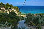 Strand Tsamadou Kokkari Samos   Griekenland foto 9 - Foto van De Griekse Gids