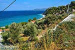 Strand Tsamadou Kokkari Samos | Griekenland foto 14 - Foto van De Griekse Gids