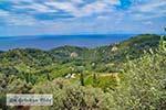 Vallei van de nachtegalen - Dal van de nachtegalen Samos 9 - Foto van De Griekse Gids