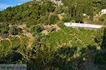 Vourliotes Samos   Griekenland   Foto 3 - Foto van De Griekse Gids