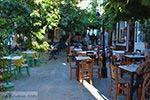 Vourliotes Samos   Griekenland   Foto 14 - Foto van De Griekse Gids