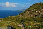 Vourliotes Samos | Griekenland | Foto 21 - Foto van De Griekse Gids