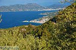 Vourliotes Samos   Griekenland   Foto 23 - Foto van De Griekse Gids