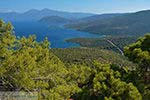 Baai Mourtia Samos | Griekenland | Foto 1 - Foto van De Griekse Gids