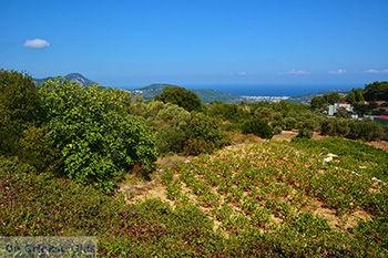 Kosmadei Samos en Karlovassi Samos gezien vanaf de bergen - Foto van De Griekse Gids