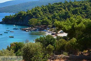 Mourtia Samos | Griekenland | Foto 5 - Foto van De Griekse Gids