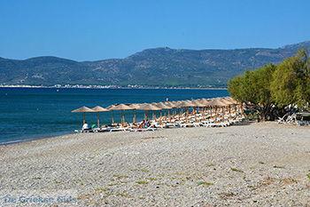 Strand bij Pythagorion Samos - Potokaki Samos foto 2 - Foto van De Griekse Gids