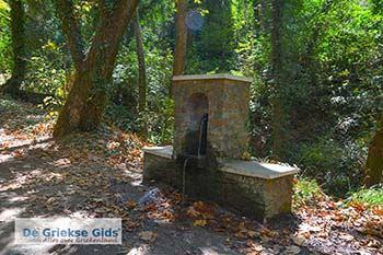 Vallei van de nachtegalen - Dal van de nachtegalen Samos 1 - Foto van https://www.grieksegids.nl/fotos/samos/normaal/vallei-van-de-nachtegalen-samos-001.jpg