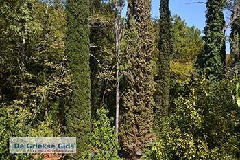 Vallei van de nachtegalen - Dal van de nachtegalen Samos 4 - Foto van https://www.grieksegids.nl/fotos/samos/normaal/vallei-van-de-nachtegalen-samos-004.jpg