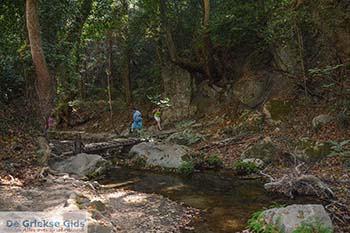 Potami - Eiland Samos - Griekse Gids Foto 6 - Foto van https://www.grieksegids.nl/fotos/samos/potami/350pix/potami-samos-006.jpg