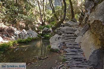 Potami - Eiland Samos - Griekse Gids Foto 8 - Foto van https://www.grieksegids.nl/fotos/samos/potami/350pix/potami-samos-008.jpg