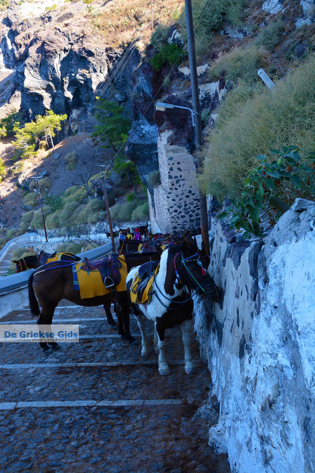 foto Fira Santorini | Cycladen Griekenland  | Foto 0063