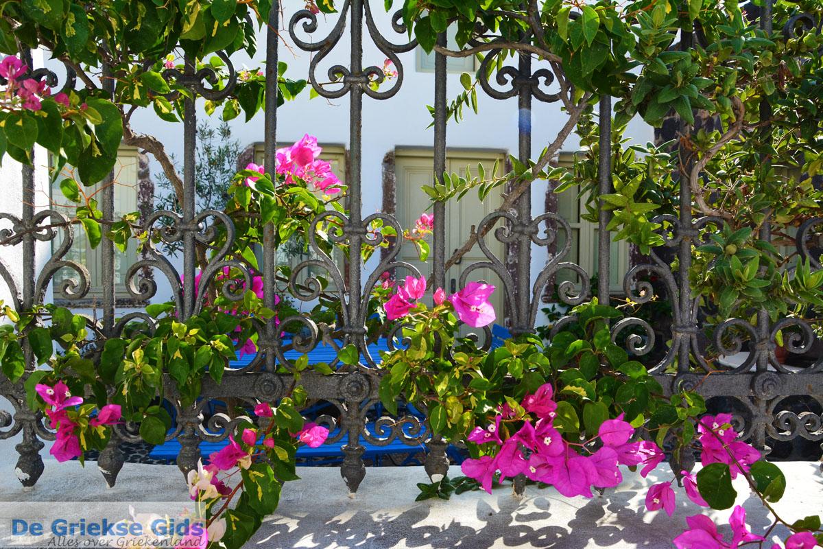 foto Megalochori Santorini | Cycladen Griekenland | Foto 20