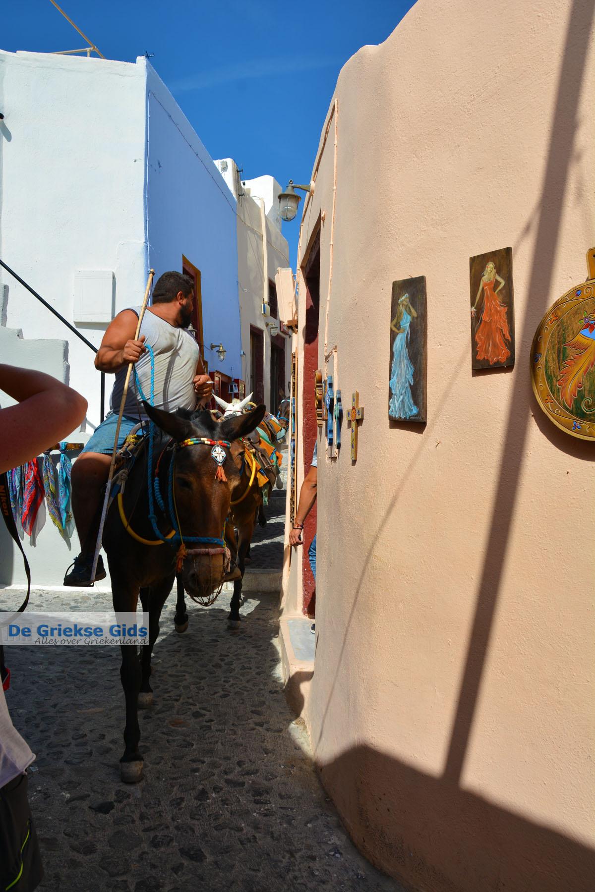 foto Oia Santorini | Cycladen Griekenland | Foto 1172