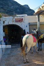 Fira Santorini | Cycladen Griekenland  | Foto 0071 - Foto van De Griekse Gids