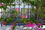 Megalochori Santorini | Cycladen Griekenland | Foto 20 - Foto van De Griekse Gids