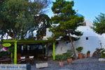Megalochori Santorini | Cycladen Griekenland | Foto 51 - Foto van De Griekse Gids