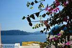 Oia Santorini | Cycladen Griekenland | Foto 1019 - Foto van De Griekse Gids
